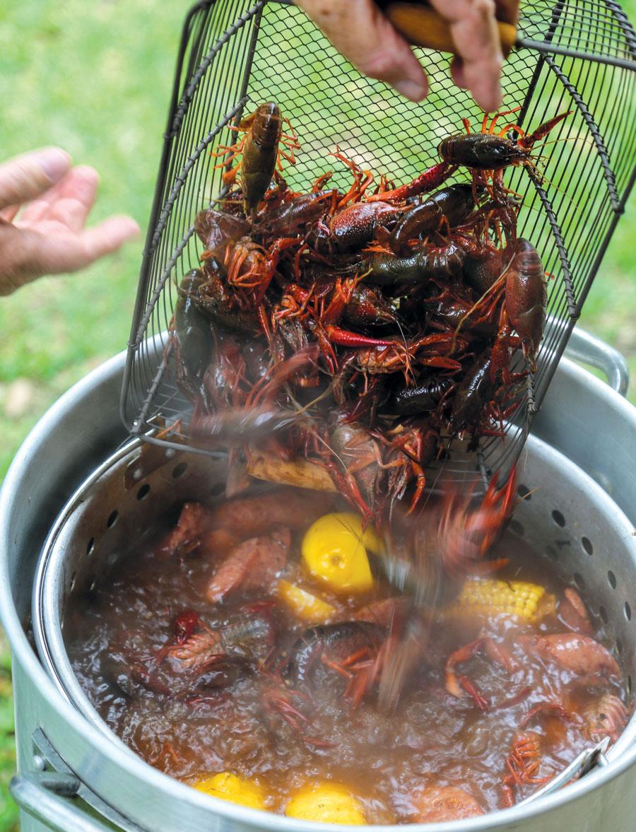boil on the bayou houston 39 s new backyard meal edible houston