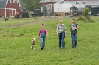 girls and lamb on farm