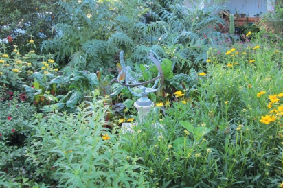 permaculture, edible gardens