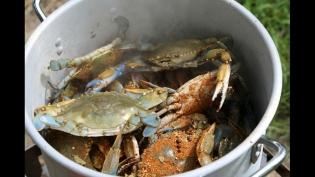 chesapeake bay seasoning, crabs